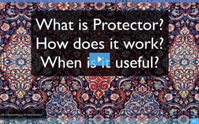 What Is Protector