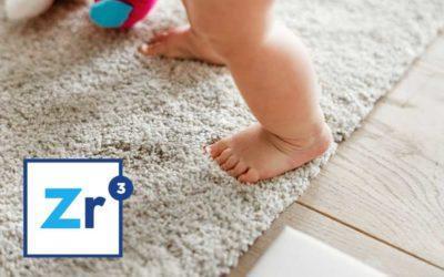Do you clean carpet too? What else do you do?