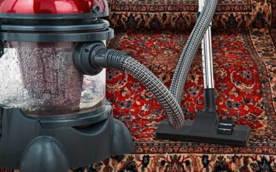 I used a rented machine to spot clean my Oriental rug after my dog peed on it.