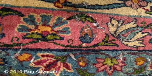 Moth casing and lavae on a rug